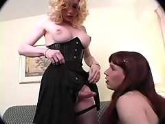 Tranny diverting companion in life