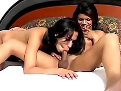 Two tgirls do blowjob to each other
